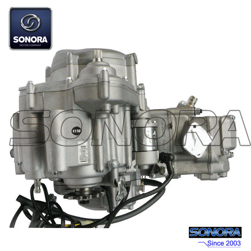 Zongshen NC250 Engine Complete Set (3)