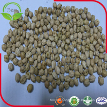 2016 Crop New Kabuli Chickpeas