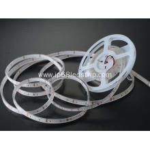 20 Years manufacturer for Led Strip Lights For Home All In One SMD 2835 12W  NW Transparent Led Strip Light supply to Portugal Factories