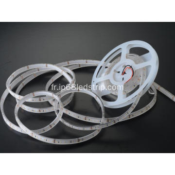 All In One SMD 2835 120 Rouge Transparent Led Strip Light