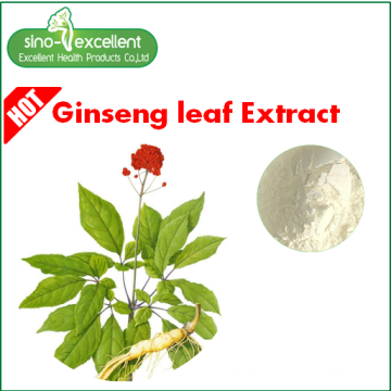 ginseng blad extract Re 17% HPLC voor cosmetica