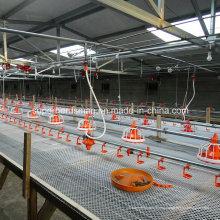 Set completo de alta calidad automático granjas avícolas para pollo