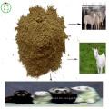 Feed Grade Fischmehl Livestocks Feed Herstellung Preis
