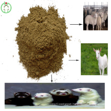 Feed Grade Fishmeal Livestocks Feed Manufacture Price
