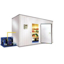 Frozen Cold Storage Room Low Temperature for Fish and Seafood