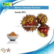 Health Product Horse Chestnut Seed Extract Powder. Aesculus Hippocastanum Extract. Horse Chestnut Seed Extract