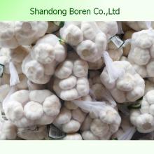 2015 New Fresh Vegetable Garlic 4.5cm-6.0cm