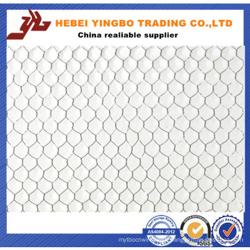 Garden Tools Leader New Hexagonal Wire Mesh with Ce Certificate