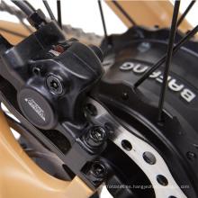 Bicicleta eléctrica e bicicleta / Cuadro de aluminio
