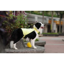 Wholesale Pet Product Dog Clothes