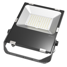 Hot Sales 50W Driverless LED Flood Light 4kv Surge Protection 5 Years Warranty