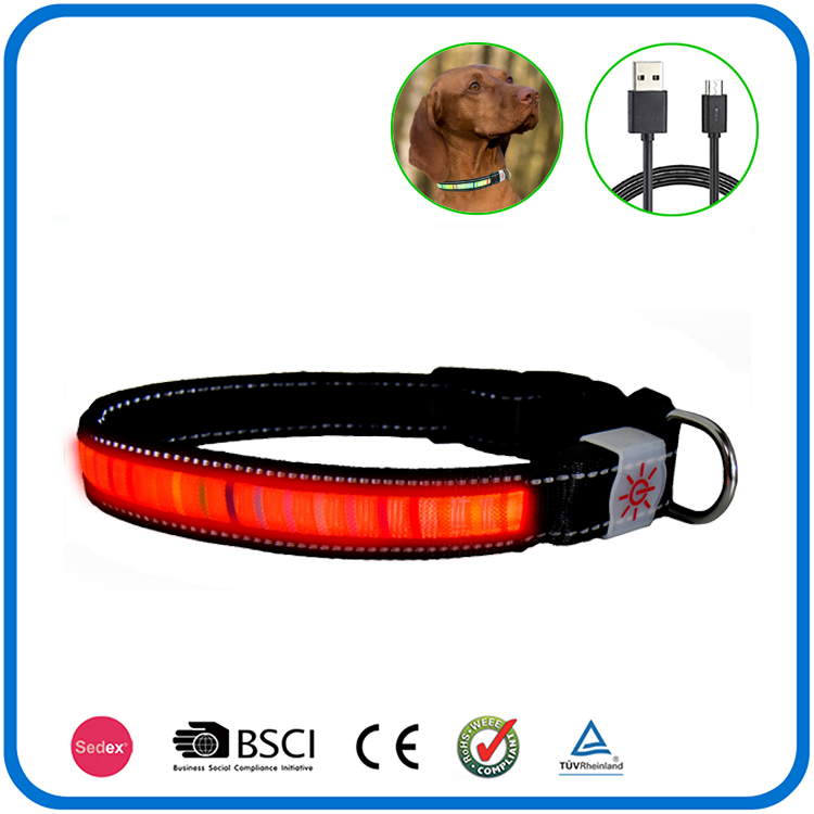Led Light Up Blinklicht Hundehalsband und Leine