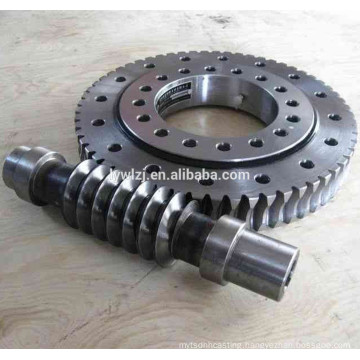 High Precision Worm Gear Shaft for Gearbox