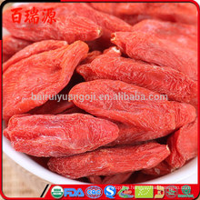 Benefits of goji goji berry tablet gochi berry