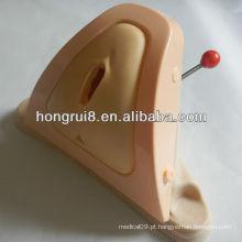 Formador de Episiotomia ISO e modelo de treinamento de sutura de perineu