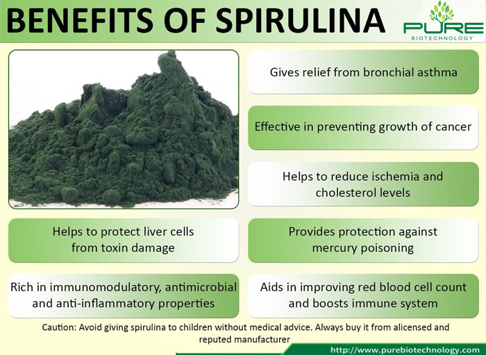 Top Grade NOP EU Certified Organic Spirulina Powder (6)
