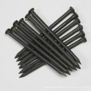 Polished Common Iron Nails