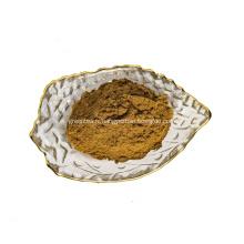 Poudre d'extrait de thé vert