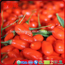 Semi di bacche di goji where to buy goji berry plants dove acquistare le bacche di goji