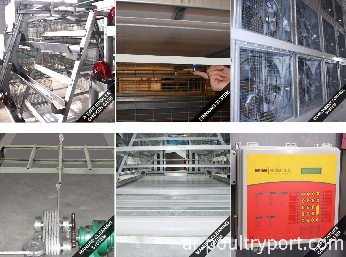 Broiler farming system accessories