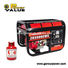 Power Value Home Gas Generator, Natural Gas Gnerator, Nature Gas Generator