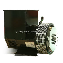 China Famous Manufacturer 64kw/80kVA Alternator Price (JDG224GS)
