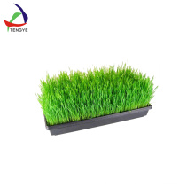 Hot Popular Top Quality Fast Shipping Soft Real Touch Seed Tray Manufacturer China