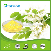 Hot selling herb extract sophora japonica extract 95% quercetin plant extract