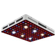 1000w / 2000w / 3000w kommerzielles gezüchtetes LED-Licht