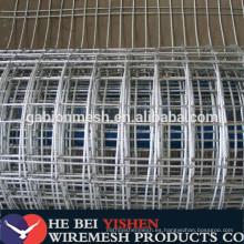 Electro galvanizado malla de alambre soldado