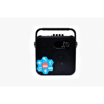 Haut-parleurs Bluetooth portables T-40B