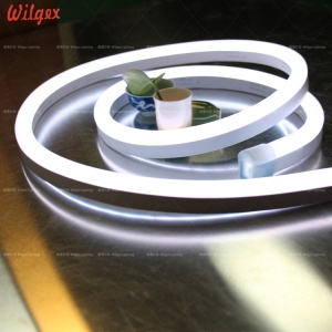 50M 24 volts SMD2835 LED strip neon