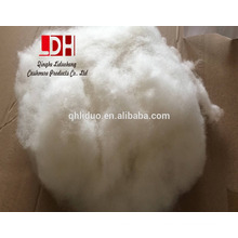 34-36mm with 15.5 micron Chinese natural white washed and carded cashmere