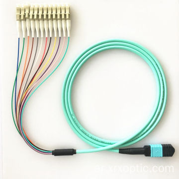 Multicore SM MM MPO patch cord