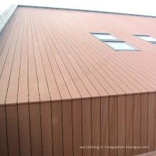 Parement de mur composite en plastique en bois résistant à la corrosion Wpc de mur