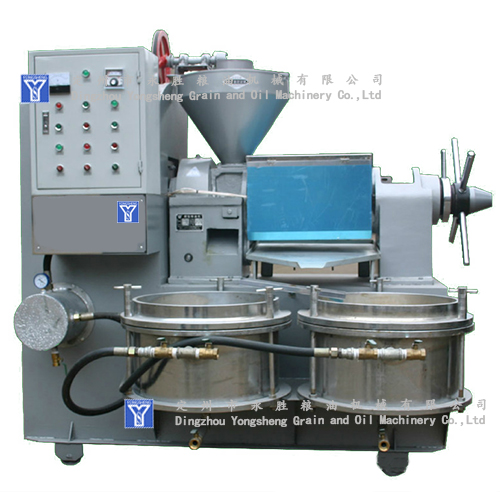 Most economical oil press