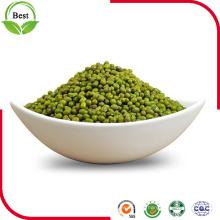 2016 Nuevo Crop Green Mung Beans