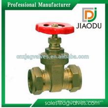Heißer Verkauf Messing Schieberventil Pumpe für Wasser