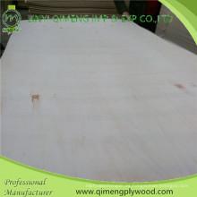 1220X2440X1.6-18mm madera contrachapada de álamo básico de Linyi Qimeng