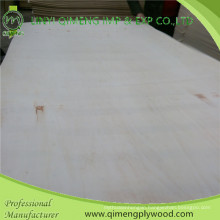 Environmental 12mm Poplar Plywood for Basic Board