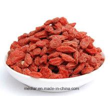 Chinesisches Gesundheitswesen-Lebensmittel - Mispel-rote Goji-Beere 220PCS / 50g