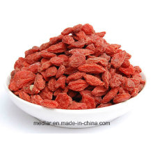 Chinese Health Care Food--Medlar Red Goji Berry 220PCS/50g