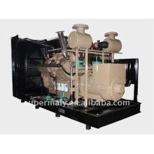 Generador de gas natural de energía verde