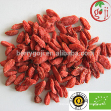 Hot sale certificate organic goji berries