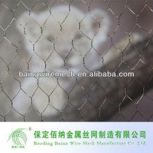 Baina Hexagonal malla de alambre para jaulas de aves de corral