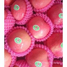 Pomme FUJI rouge douce et croustillante