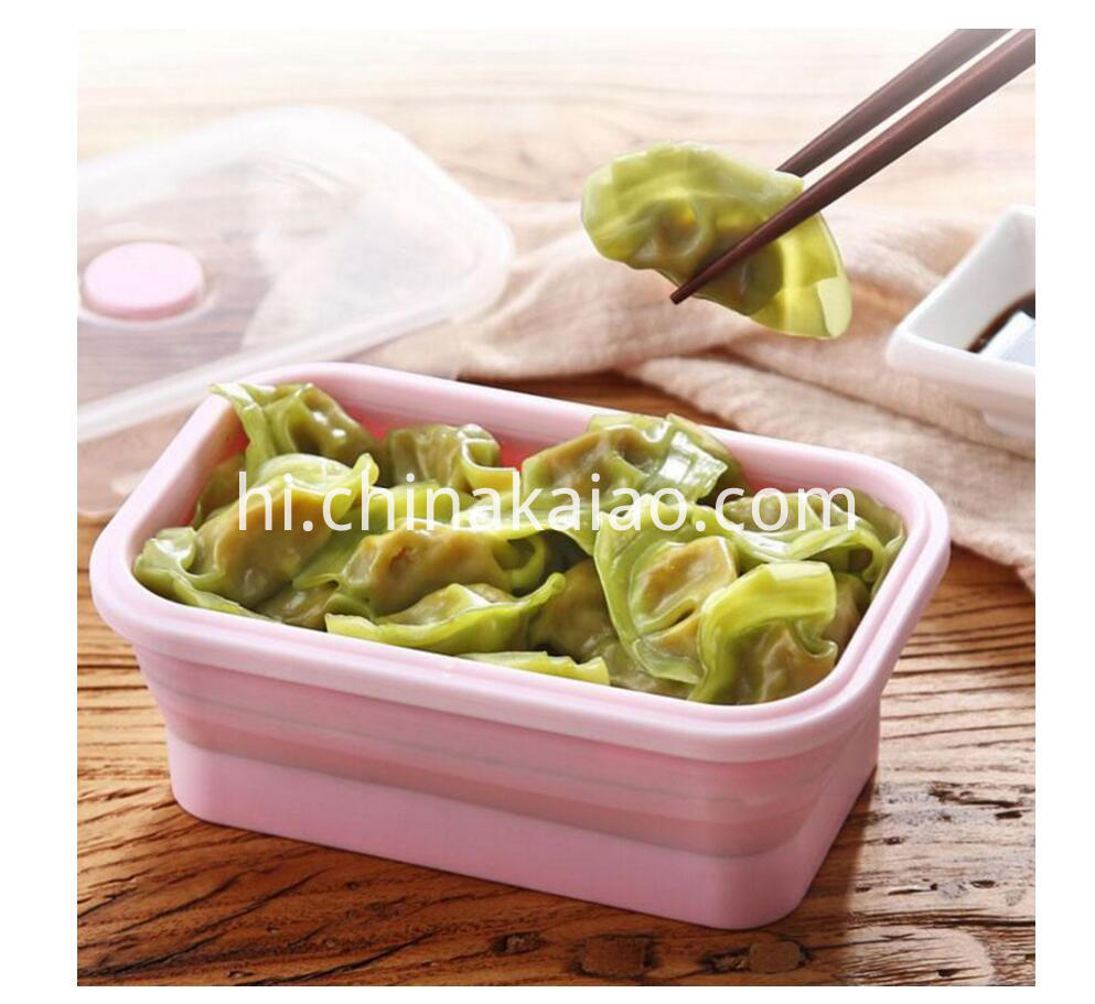 foldable lunch box (1)