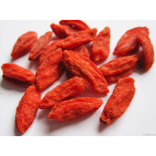 Low-Pestizid Goji Berry aus China Herkunft (160/220/350)