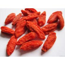Goji Berry à faible teneur en pesticides originaire de Chine (160/220/350)