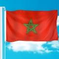 promoción entrega rápida bandera bandera de poliéster